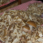 Porcini Season 150x150 Are You Using Sugar to Boost Your Energy?
